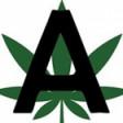 Amanda's Marijuana Delivery Service
